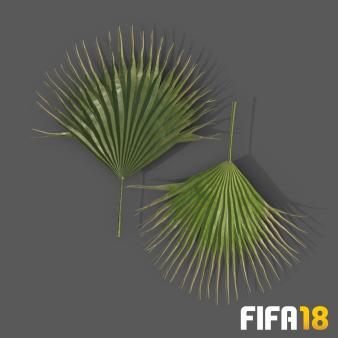 palm_leaf_01